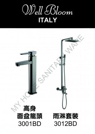 Well Bloom Italy 熱賣300系列黑拉絲龍頭連雨淋套裝(300BDR2)