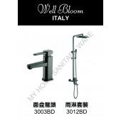Well Bloom Italy 熱賣300系列黑拉絲龍頭連雨淋套裝(300BDR)