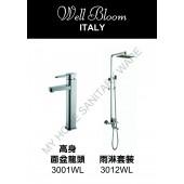 Well Bloom Italy 熱賣300系列不銹鋼拉絲龍頭連雨淋套裝(300WLR2)