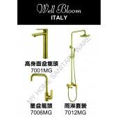 Well Bloom Italy 熱賣700系列拉絲金龍頭連雨淋套裝(700MGR2)