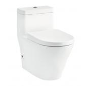 TOTO Rimless 自由咀連體座廁配油壓廁板連12 吋地去水配件  (CW166)